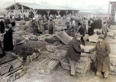 Lebendviehhandel 1956